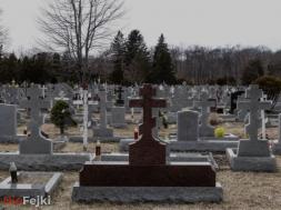 zabójca na cmentarzu