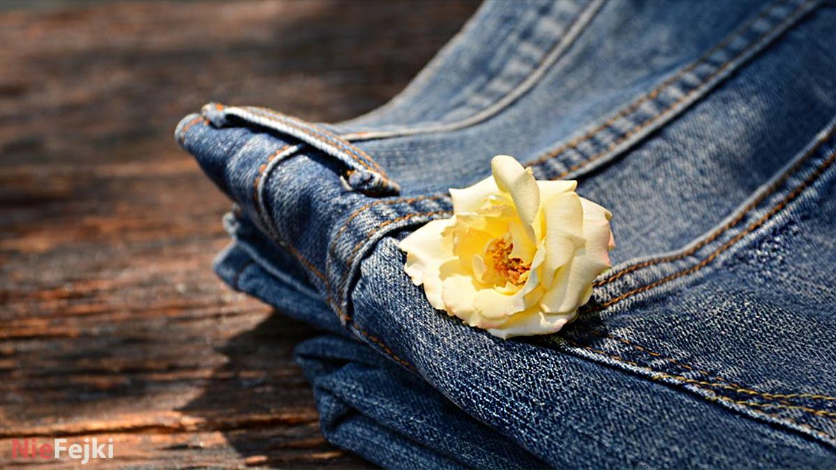 Jeansy w ekologicznym wydaniu w Closh Store