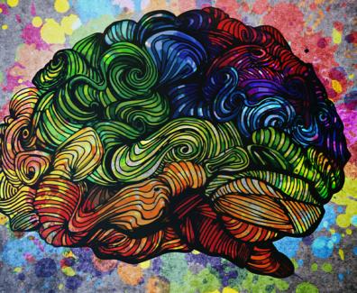 niefejki-mózg